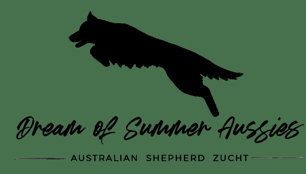 Australian_Shepherd_zucht_dream_Summer_Pirmasens_Hund_Kaufen_Logo_Kaiserslautern_Saarbruecken